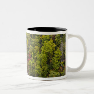 Dramatic Whitewater Falls in autumn in the Two-Tone Coffee Mug