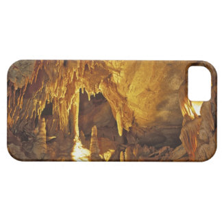 Drapery Room, Mammoth Cave National Park, iPhone SE/5/5s Case