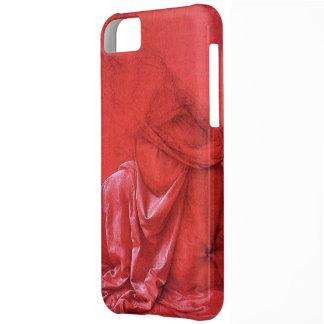 drapery study iPhone 5C case