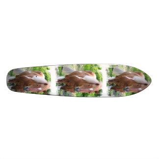Draught Horse Skateboard