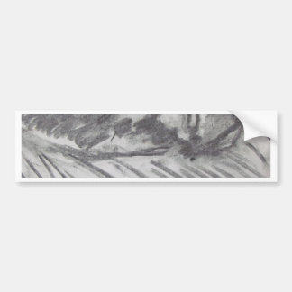 Drawing of a Cat Bumper Sticker