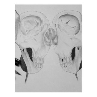 Drawing of a skull by me ;))))) postcard