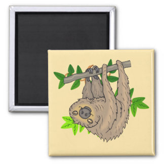 Drawing of a Sloth Hanging Upside Down 2 Inch Square Magnet
