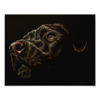 Drawing of Black Dog on Professional Photo Paper