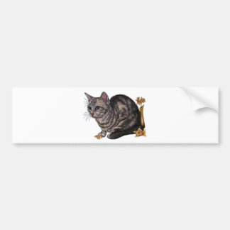 Drawing of Cat with Daffodils Bumper Sticker