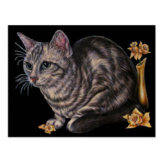 Drawing of Cat with Daffodils on Postcard