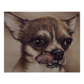 Drawing of Chihuahua Licking Lips Posters