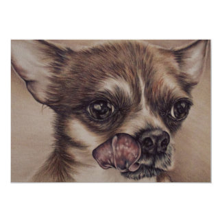 Drawing of Chihuahua on Card