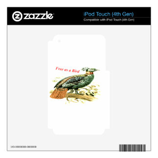 Drawing of pheasant free as a bird skins for iPod touch 4G