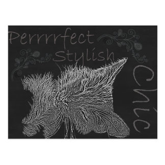 Drawing of Sleepy Cat in Chalk Post Card