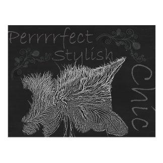 Drawing of Sleepy Cat in Chalk Postcard
