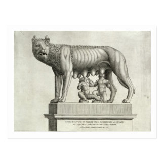 Drawing of the Etruscan bronze of the she-wolf suc Postcard
