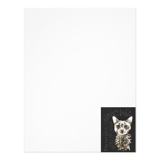Drawing of White Cat in Chalk Letterhead