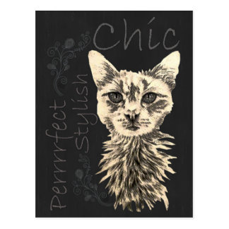 Drawing of White Cat in Chalk Postcard