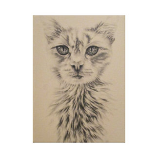 Drawing of White Cat - Mystique Canvas Print