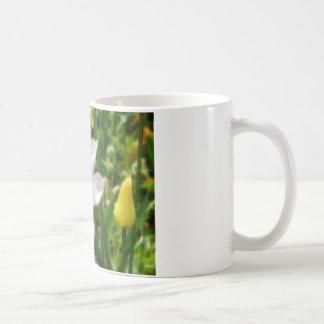 Drawing of white tulip flower coffee mug