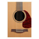 Dreadnought Acoustic six string Guitar Posters