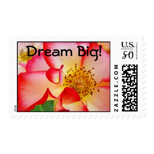 Dream Big! postage stamps Bright Colorful Rose