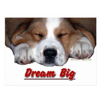 Dream Big Sleeping St. Bernard Mix Postcard