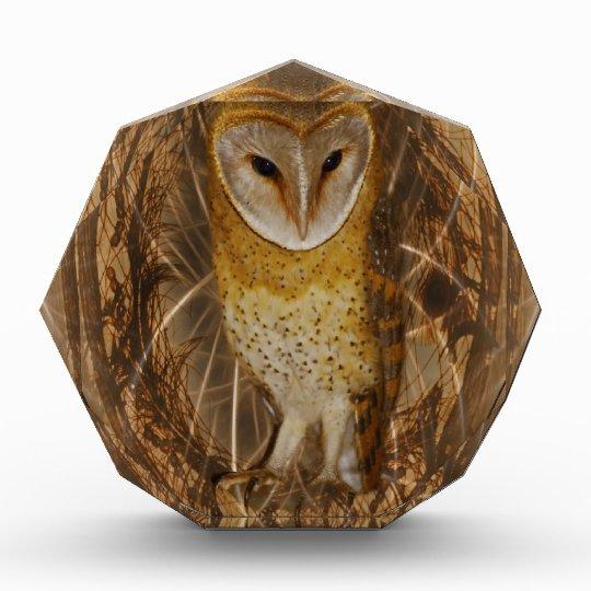 Dream catcher owl acrylic award