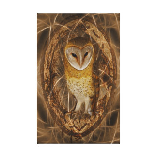 Dream catcher owl canvas print
