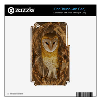 Dream catcher owl iPod touch 4G skin