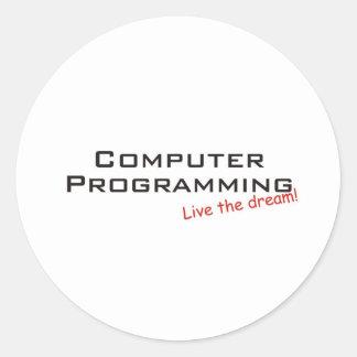 Dream / Computer Programming Classic Round Sticker