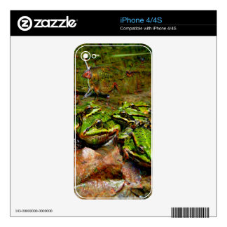 Dream Creatures, Frog, DeepDream Decal For The iPhone 4S