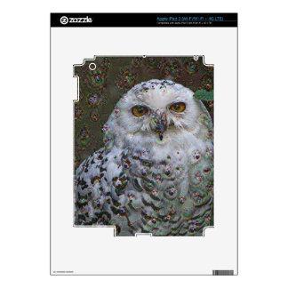 Dream Creatures, Snowy Owl, DeepDream Skins For iPad 3