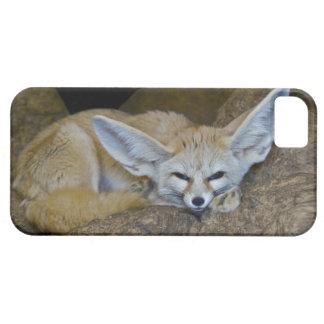 Dream Ears iPhone 5 Case-Mate Case