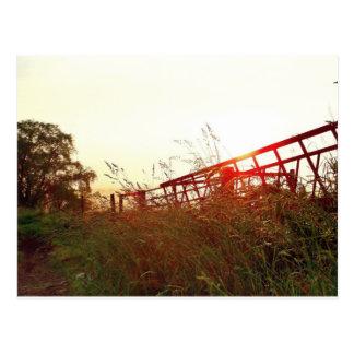 Dream Fields Postcard