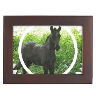 Dream Horse Keepsake Box