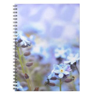 Dream in Blue Spiral Notebooks