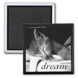 Dream Kitten - Magnet