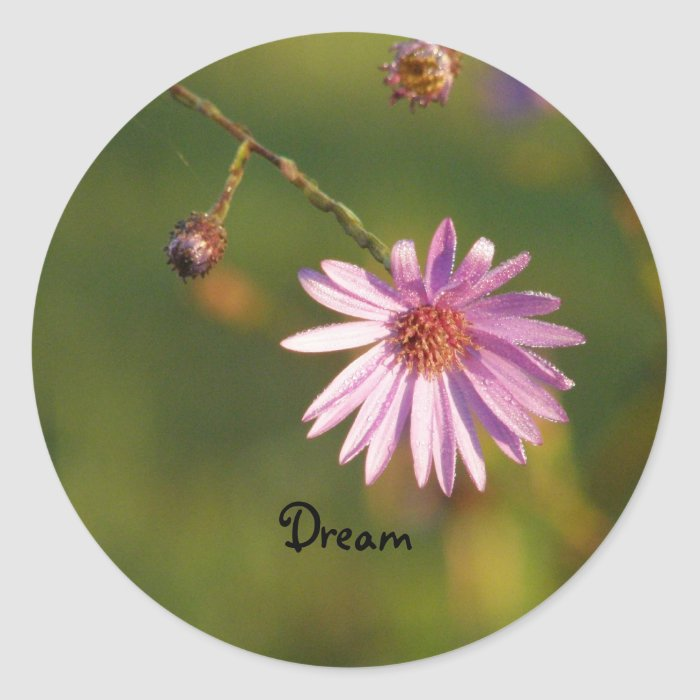 Dream of Flowers Classic Round Sticker
