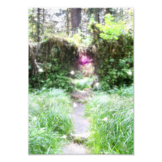 Dream Photo Print