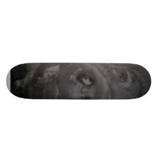 Dream pig skateboard