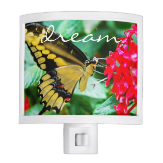 """""""Dream"""" Quote Cute Yellow & Black Butterfly Photo Night Light"""