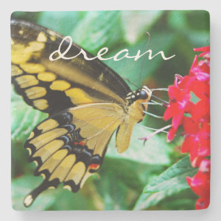 """""""Dream"""" Quote Cute Yellow & Black Butterfly Photo Stone Coaster"""
