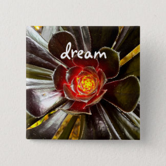 """Dream"" quote giant orange and black cactus photo Pinback Button"