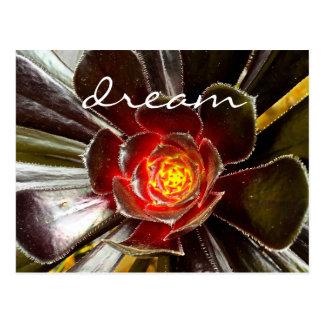"""""""Dream"""" quote orange & black cactus photo postcard"""