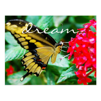 """""""Dream"""" quote yellow and black butterfly photo Postcard"""