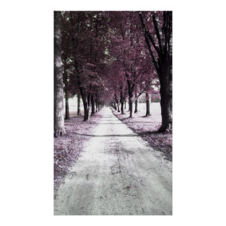 dream road poster