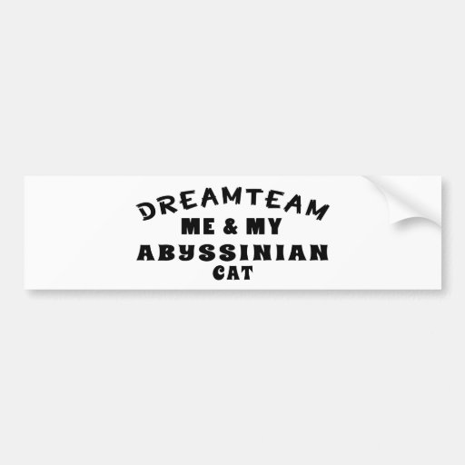 Dream Team Me And My Abyssinian Cat Bumper Stickers
