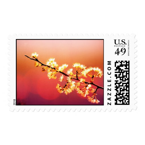 Dreamer, Spring Flowers are blooming Stamp