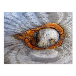 Dreaming Eye of Tree Knothole Series V01 Postcard
