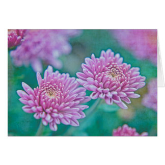 Dreaming in Mums Greeting Card