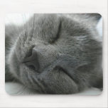 Dreaming kitty mouse pad