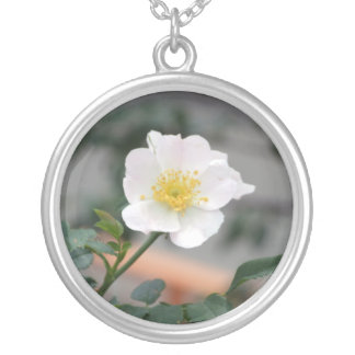 Dreaming morning round pendant necklace