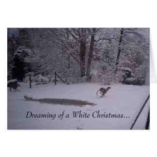 Dreaming of a White Christmas Cards